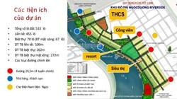 Sở hữu những lô đất liền kề cuối cùng của dự án đất nền ven biển Đà Nẵng .