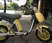 1 Cần bán xe Nijia phanh đĩa màu vàng hình thức đẹp