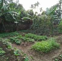 2 Bán đất tại Tỉnh lộ 422 lũng kênh, đức giang, Hà Nội