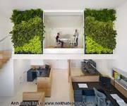 11 Văn phòng đẹp tiện nghi phố Trần Thái Tông- Duy tân, từ 15-40m2 trọn gói