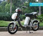Xe đạp điện Nijia 2016 nhập khẩu chính hãng giá rẻ nhất Hà Nội