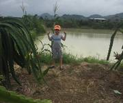 2 Cần bán trang trại rẫy  27540m2 trồng 1200 gốc thanh long non 1000 gốc xoài Đài loan,cách QL 1A 200m