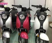 4 Xe đạp điện, Xe máy điện - DNTN Thắng Thủy 256 Quang Trung, TP Nam định