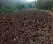 Cần chuyển nhượng 10 ha đất trồng cây lâu năm TẠI HÒA BINH