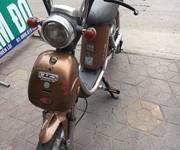 1 Xe đạp điện nijia