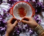 7 Saffron nhụy hoa nghệ tây Iran chính hãng - Chất lượng tốt nhất