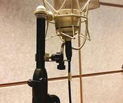 1 Cần bán Mic thu âm high end Neuman TLM 49