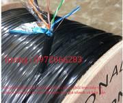 1 Cáp mạng outdoor Cat 5 FTP hãng TE-krone có sợi dây cường lực cáp lõi đồng