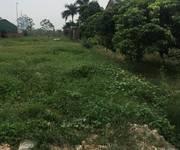 Bán 1200m2 đất trồng cây lâu năm, tại km số 13 đường đại lộ thăng long, xã song phương,Hoài Đức