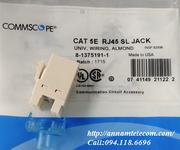3 Nhân mạng RJ45 Cat6 Commscope mã 1375055-1, nhân mạng RJ45 Cat5E mã 1375191-1, chân đồng
