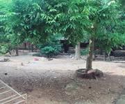 6 Bán nhà cổ 5 gian xã Lại Thượng, Thạch Thất, Hà Nội