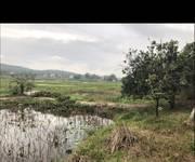 3 Cần bán đất trang trại , vườn đồi...