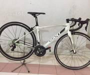 Xe đạp đua giant defy cảbon