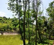 3 Bán 80 hecta đất trồng cây lâu năm xã Diên Lâm, Diên Khánh, Khánh Hòa.