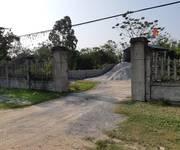 1 Cho thuê đất làm kho xưởng MT đường TL310, Bình Xuyên, Vĩnh Phúc.
