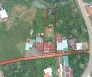 2 Khu nghỉ dưỡng 1200m2, ao suối và nhà cấp cấp 4, cách trung tâm Bảo Lộc 6km