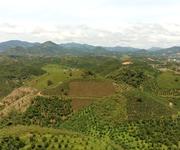2 Khu nghỉ dưỡng 3,6 ha, view đồi, đường lớn, Cách trung tâm Bảo Lộc 13km
