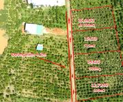 Khu nghỉ dưỡng Bảo Lộc 500m cách trung tâm 5km