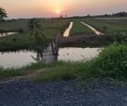 Bán 14006m  Đất Trồng Lúa giá cực rẻ Tại Tân Phú Đông,Tiền Giang .