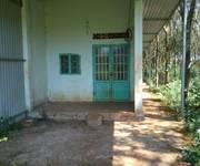 2 Chính chủ Cần bán 5 mẫu đất trồng cây lâu năm Huyện Đắk R Lấp, Đắk Nông