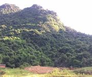 5 Cần hợp tác KD hoặc chuyển nhượng trang trại tại Lương Sơn, Hòa Bình
