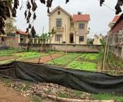 2 Bán đất biệt thự chính chủ tại Xóm Chợ, Bình Minh, Thanh Oai, Hà Nội