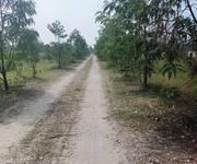 4 Chính chủ cần bán gấp lô đất đẹp ở Xã Vĩnh Lộc B. Huyện Bình chánh. Tp.HCM