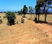 3 Đất nông nghiệp sổ đỏ từng lô giá rẻ Sông Lũy, Bắc Bình, Bình Thuận