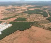 3 Bán gấp lô đất trồng cây ở Bình Thuận 60-80 ngàn/m2, sổ đỏ riêng, sang tên nhanh
