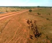 9 Đất vàng trong khu nông nghiệp công nghệ cao, sổ riêng/lô, 50-70 ngàn/m2
