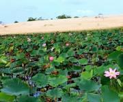 1 Cần bán miếng đất giá rẻ cạnh sân bay Phan Thiết   chỉ mua và chờ đất tăng giá