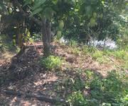 5 Chính chủ cần bán gấp lô đất rẫy 51890m2  tại Xã Tân Hà - Huyện Hàm Tân.