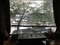 Cho thuê Nhà kinh doanh cafe,nhà hàng đẹp Phố Mai Anh Tuấn,Hoàng Cầu 90m2 x 5 tầng