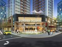 Cần cho thuê gấp căn hộ Summer Square , Quận 6 . Diện tích 65m2, 2PN