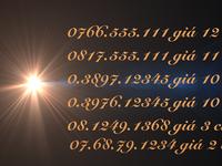 Sim số đẹp 555111.12345.1368.1234