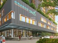 Cần cho thuê căn hộ DRAGON HILL ,Diện tích :71m2 giá 10 triệu, Full nội thất,chính chủ.