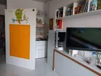 Cho thuê chung cư mini Beehome  Tân Bình