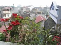 Chung cư mini quận Hoàng Mai, 40m2, cho thuê giá rẻ