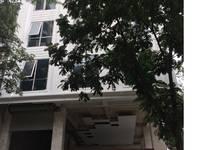 Cho thuê tòa nhà Phố Hoàng Công chất 182m2 x 6 tầng, 1 hầm, mt 10m