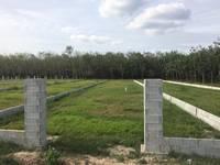 Đất nhuận đức củ chi cần bán gấp diện tích 80m2