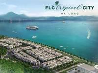 Đầu tư sinh lời   An cư lập nghiệp chỉ 350tr ngay tại Tp Hạ Long