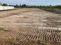 Cần tiền bán gấp đất nền thổ cư hồ tràm,100m2,giá 900 triệu