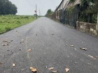 Còn vài lô đất mặt tiền quốc lộ 22 Củ Chi giá rẻ, giảm thêm 50 triệu cho khách hàng...