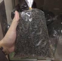 1 Trà Tân Cương Thái Nguyên đảm bảo chất lượng tại Hà Nội, không ngon xin hoàn tiền