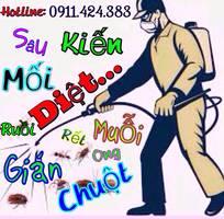 Diệt trừ và phòng chống: mối, muỗi, gián, chuột...tại Quảng Ninh