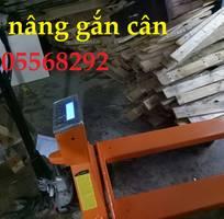 18 Cho thuê xe đẩy Đà Nẵng, cho thuê xe nâng tay Đà Nẵng, sửa chữa xe nâng tay Đà Nẵng