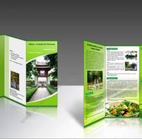 2 Chuyên thiết kế in ấn -Công ty TNHH Đại Trường Thịnh