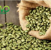 Công bố tiêu chuẩn chất lượng cà phê nhân tại Ban quản lí an toàn thực phẩm