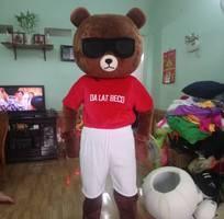 14 Mascot Thành Công Chuyên May Mascot Mô Hình Linh Vật Sản Xuất Phân Phối Mascot Trên Toàn Quốc