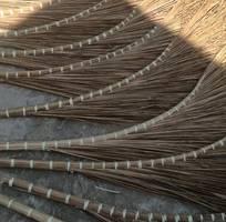 4 Chổi bông cỏ, chổi cỏ cán nhựa, chổi dừa